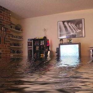 споры со страховой при затоплении